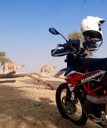 Die KTM 690 in der Wüste